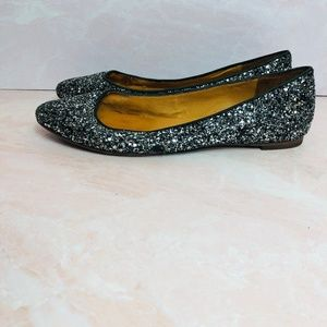 Madewell 1937 Footwear Glitter Pointed Flats 9